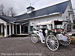 Carriage top up option - Crimson Lane