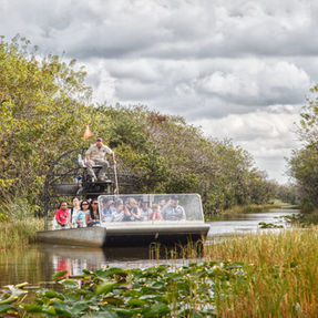 Airboat Ride in Everglades
