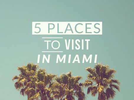 TOP 5 PLACES TO VISIT IN MIAMI