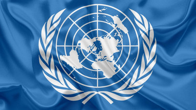 Bias against Men's issues within the United Nations and the World Health Organization