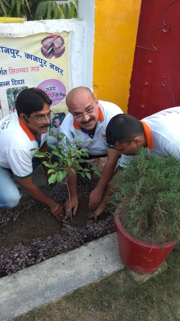 Daaman team planting a tree
