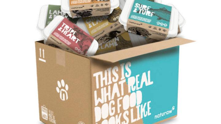 Small Raw Dog Food Taster Box