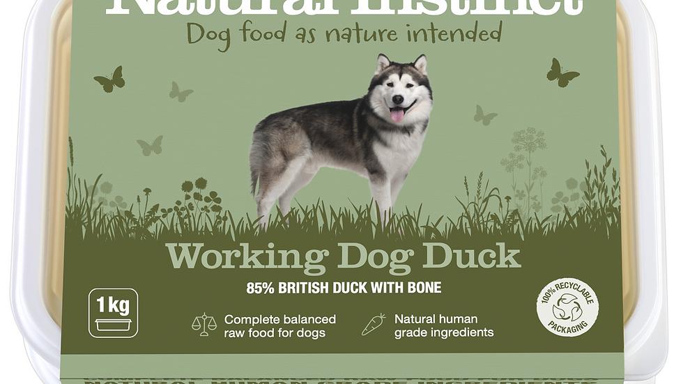 Natural Instinct - Working Dog Duck