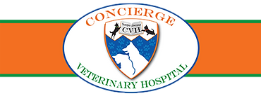 Concierge Vet Hospital Trans. - Copy.png