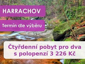 5.nabídka_česko.png