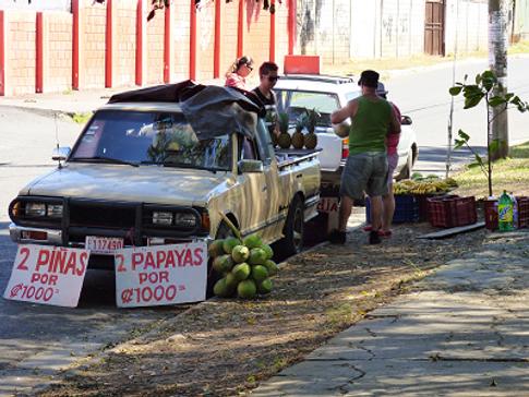 mistni ovoce Kostarika.png