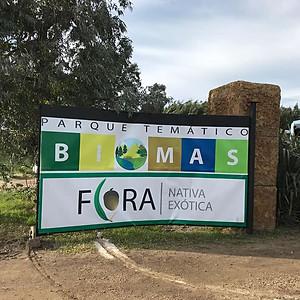 Parque temático biomas.Segundo año secundaria.