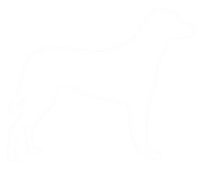 Felicity Kate Ltd - canine dog.png
