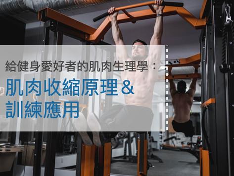 給健身愛好者的肌肉生理學:肌肉收縮原理&訓練應用