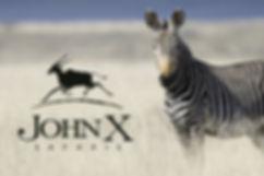 John X zebra and logo.jpg