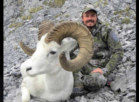 Wild Sheep Journal Fall 2018 – James Reed