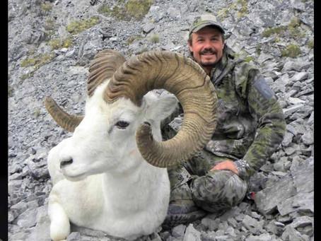 Wild Sheep Journal Fall 2018 – James Reed