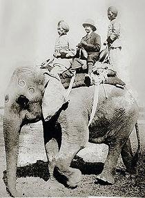 king-george-v-mounted-on-elephant.jpg