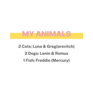 My Animals: 2 cats, 2 dogs & 1 fish