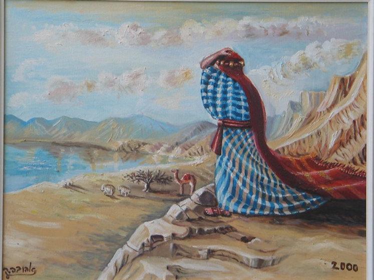 משה בהר נבו.jpg
