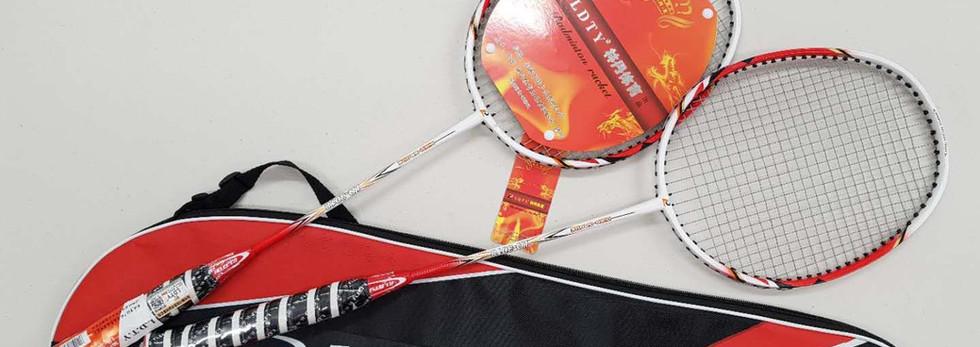 Entry Badminton racket (LD-3018)
