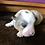 Thumbnail: Austin ~ Blue Merle ~ Fluffy Carrier ~ Triple Clear ~ 100% Pembroke~ Pending