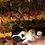 Thumbnail: Shilo ~ Fluffy Tri ~ Brindle Points