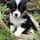 Thumbnail: Lefty ~ Tri Fluffy ~ Less Shedding
