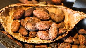 cacao-3995994_1920.jpg
