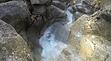 Canyon verdon pays dignois Alpes de Hautes-Provence canyoning 04