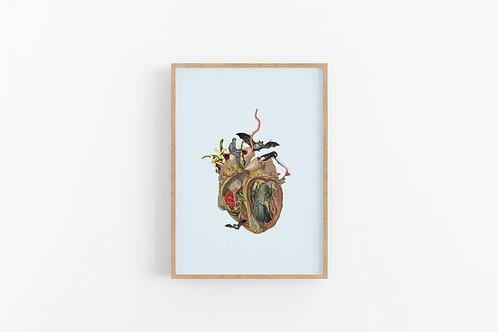 לב פתוח| 10*15