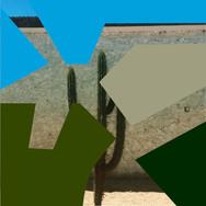 'CACTUS' Serie Matrices Grabado Digital