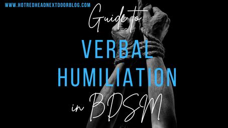 Verbal Humiliation in BDSM