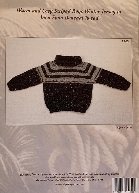 Boys Winter Jersey - Alpaca Yarns 1203
