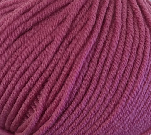 Purple Orchid 1545—Zara