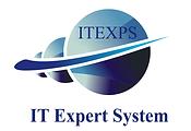 IT Expert System Logo