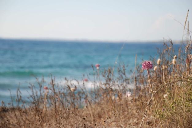 Korakochori Beach