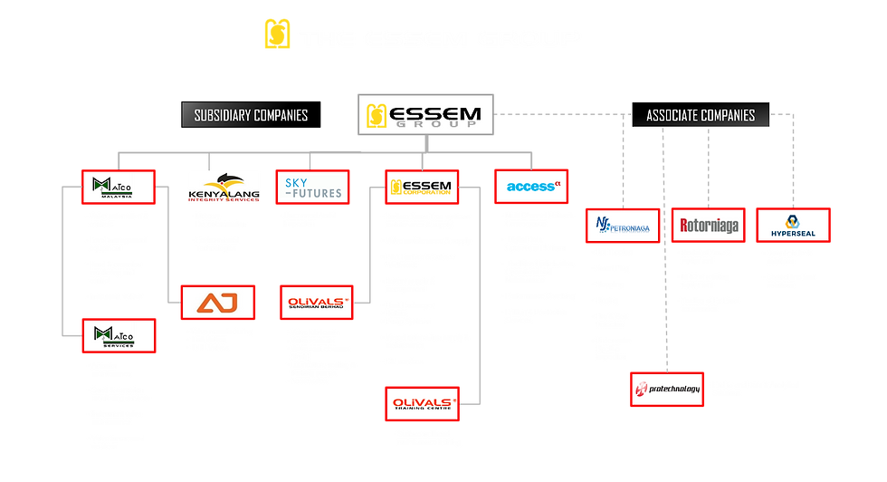 Essem Group org chart access.png