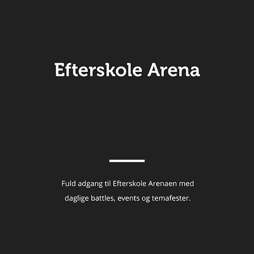 8-dags billet Arena