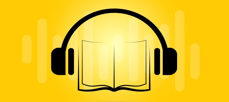 audio livro 2