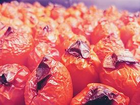 tomatohats.jpg