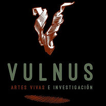 logo negro vulnus.jpg