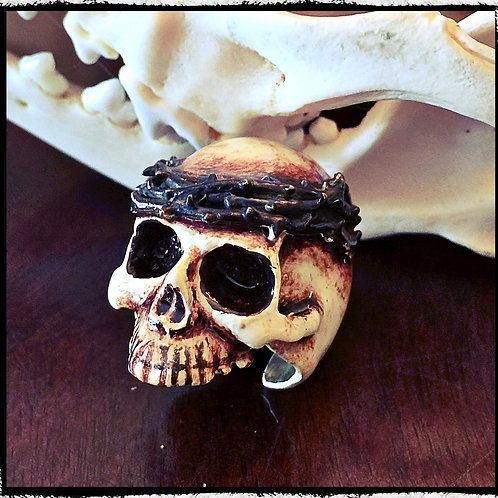 Solid Bronze Bone Colored Skull Ring With Crown