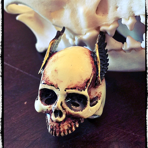Solid Bronze Bone Colored Skull Ring With Wings