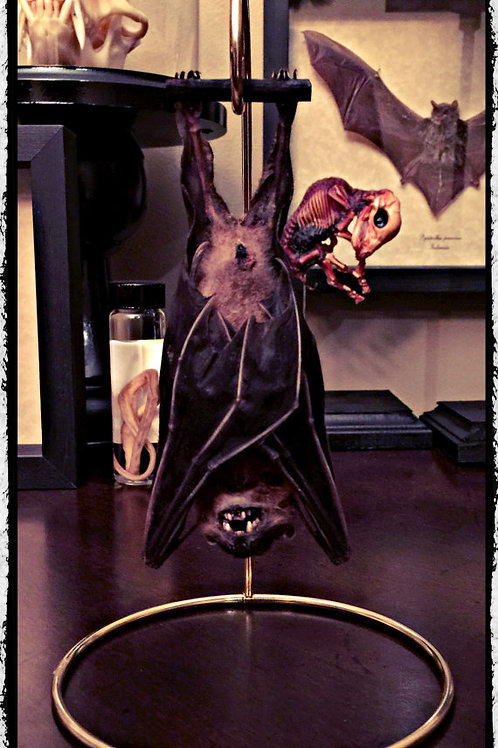 Hanging Bat on Gold Wire Stand