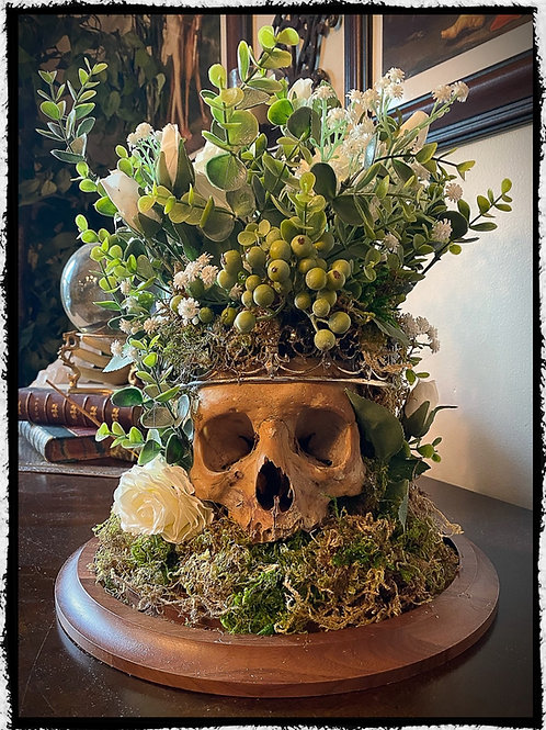 """Antique Human Skull art Display - """"The Union of lovers """""""