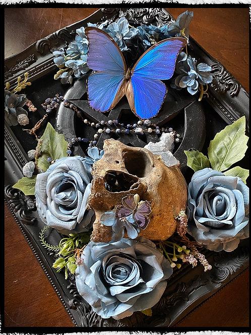 """Eternal"" - Occult and Oddities Art Piece"