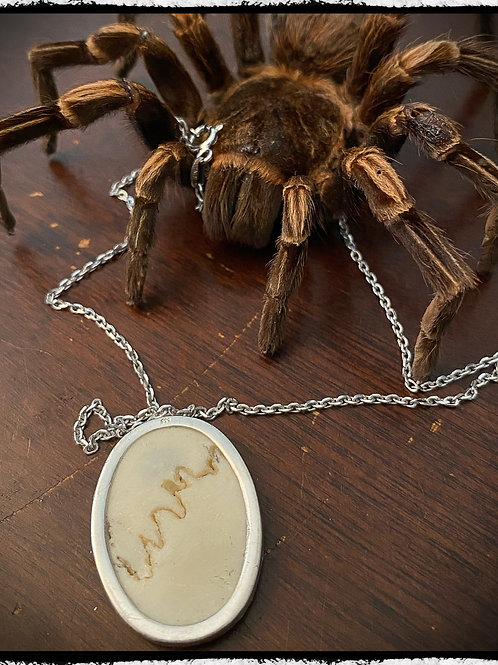 Human Skull Bone Sterling Silver Pendant and Necklace