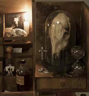 Strange picture number 1 by www.odditiesdomains.com
