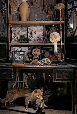 Strange picture number 2 by www.odditiesdomains.com