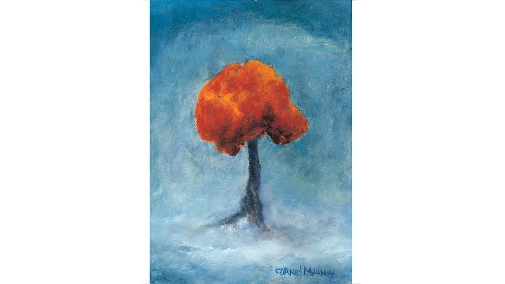 Tree in Volcanic Landscape