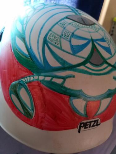helmet beetle