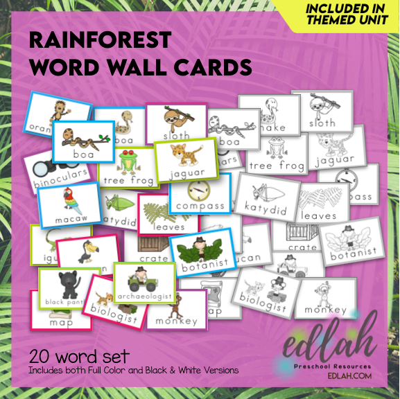Rainforest Vocabulary Word Wall Cards (set of 20) - BUNDLE-Version#1