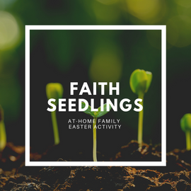 Faith Seedlings Activity