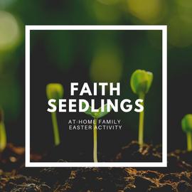 Faith Seedlings